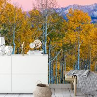 Birches and Mountains - 5066