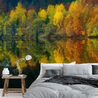Autumn Forest Lake - 5067