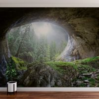 Cave In The Forest - 5078