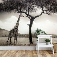 Giraffe Safari - 5084
