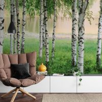 Nordic Forest - 5424
