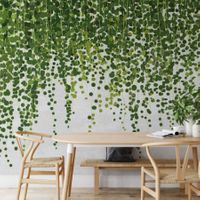 Hanging Plants - 5442