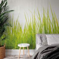 High Grass - 5447