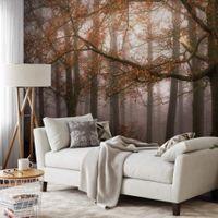 Misty Autumn Forest - 5450