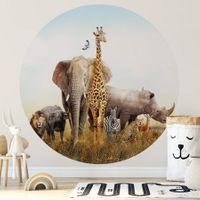 African Elephant - 5521